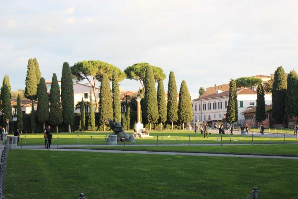 Roteiro em Pisa - Jardim da Praça dos Milagres
