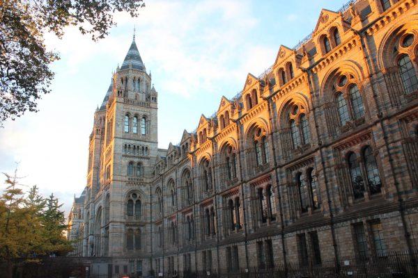 Roteiro de 4 dias por Londres - Museu de História Natural