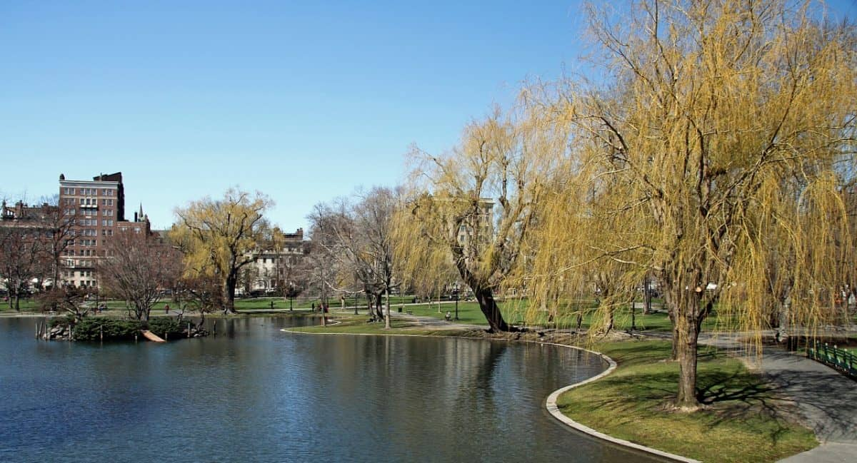 Boston - Jardim Público de Boston